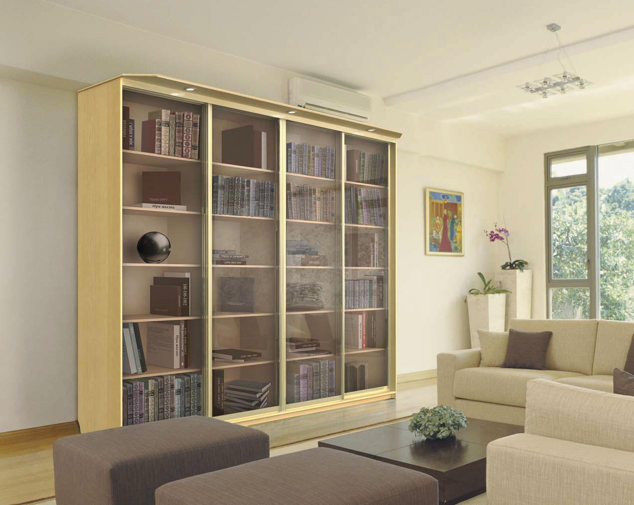 Шкаф-купе в библиотеку.
